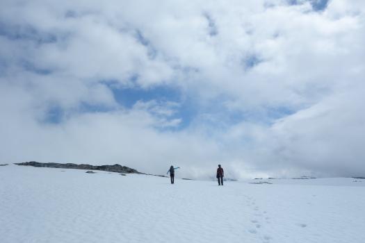 Snow on top of Nærøyfjord