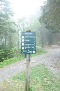 Hiking Trails in Mount Fløyen